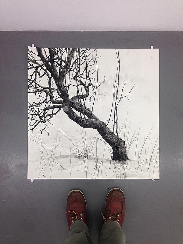 Teckning som föreställer ett gammalt träd. Konstnär Patrick Nilsson. På bilden syns också konstnärens skor.